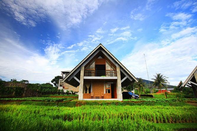 rumah sawah dan rumah kebun 1