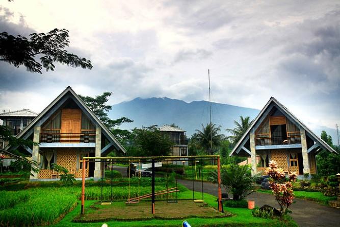rumah sawah dan rumah kebun 2