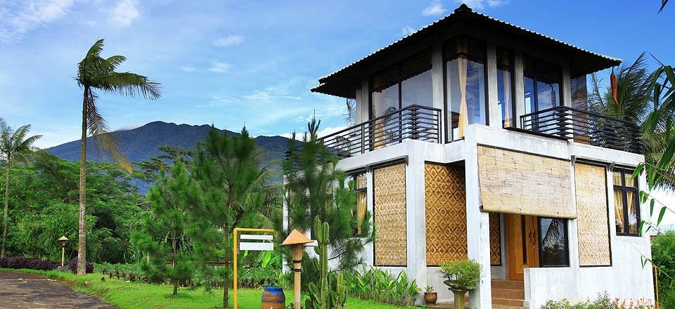 Rumah Cemani, Serama dan Koi